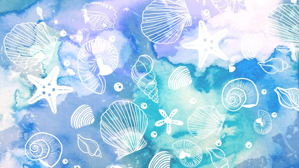 海の貝殻のイラスト 水彩画